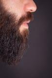 Mann mit Bart Stockbild