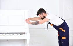 Mann mit Bart und Schnurrbart, Arbeitskraft im Overall drückt Klavier, weißen Hintergrund Lieferungsservicekonzept Laderbewegunge stockfotografie