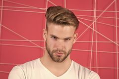 Mann mit Borste auf strengem starkem Gesicht, rosa Hintergrund Kerl bärtig und attraktiv mit Frisur männlichkeit lizenzfreie stockbilder