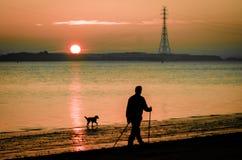 Mann mit dem Hundnordic, der am Flussstrand geht stockbild