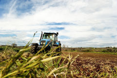 Mann mit dem Traktor, der auf den Gebieten arbeitet Lizenzfreie Stockfotografie