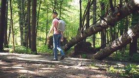 Mann mit einem Rucksack im Wald stock video footage