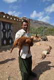 Mann mit einer Ziege im Jemen, Socotra Stockfotografie