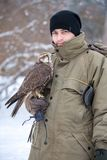 Mann mit Falken Stockfotografie