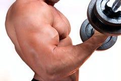 Mann mit Gewichten eines Stabes bei der Handausbildung lizenzfreies stockfoto