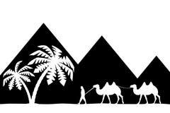 Mann mit Kamel der Pyramiden. Stockbild