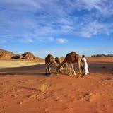 Mann mit Kamelen in Wadi Rum-Wüste Lizenzfreies Stockbild