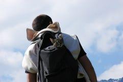 Mann mit Katze Lizenzfreie Stockfotos