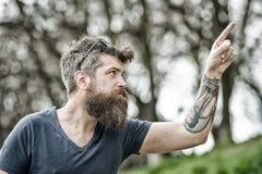 Mann mit langem Bart und Schnurrbart, die aufwärts mit dem Finger, defocused Hintergrund zeigen Kerl schaut mit stilvollem Bart k Stockfotografie