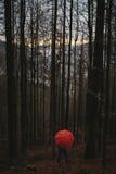 Mann mit rotem Regenschirm im Holz Lizenzfreie Stockbilder