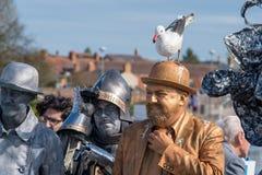Mann mit Seemöwe auf Kopf justiert Bindung, während Ritter in der Rüstung Maske justiert lizenzfreie stockfotos