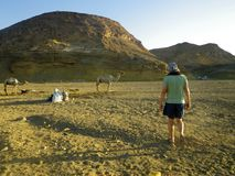 Mann nahe bei afrikanischen Kamelen Lizenzfreie Stockfotos