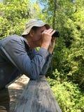 Mann, Natur beobachtend Stockbild