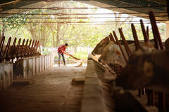 Mann-Reinigungs-Bauernhof-Landwirt Sweeping Stables People in der Ranch Stockfotos
