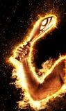 Mann ` s Hand in einem Feuer hält Goldschale Sieger in einem Wettbewerb lizenzfreies stockfoto