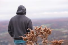 Mann ` s Rückseite, die in Richtung des Mountaings blickt Stockfotos