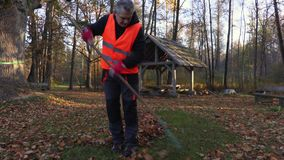 Mann sammeln Blätter auf Gras im Park stock footage