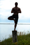 Mann-Schattenbild, das Yoga auf einem Stumpf in der Natur tut Lizenzfreies Stockfoto