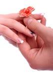 Mann setzte einen Ring auf ihren Finger Stockfotografie