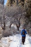 Mann snowshoer steigender Hügel Stockfotos