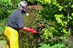 Mann sprüht Garten lizenzfreie stockfotos