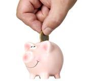Mann steckt Geld in Einsparungschwein Stockbilder