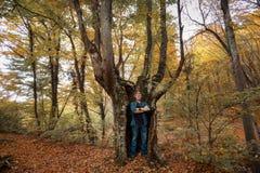 Mann steht im Stamm eines Baums stockfotos