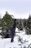Mann-tragender Weihnachtsbaum an Snowy-Tag Stockfotografie