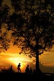 Mann- und Baumschattenbild Stockfotos