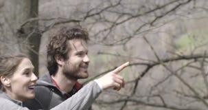 Mann und Frau, die in Birkenholz forestclose herauf Seite gehen und wandern Verbinden Sie Leute Reise des Liebesherbstes in der i stock footage