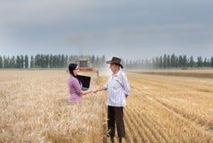 Mann und Frau, die Hände an der Ernte rütteln Stockbilder