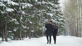 Mann und Frau, die in Winter-Park gehen stock footage
