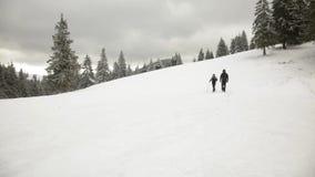 Mann und Frau, die in Winterberge gehen stock footage
