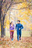 Mann- und Frauenbetrieb als Eignung tragen in einem Herbstpark zur Schau lizenzfreies stockbild