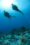 Mann- und Frauenunterwasseratemgerätsturzflug togeather Stockfotografie