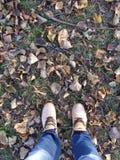 Mann und gefallene Blätter stockfoto