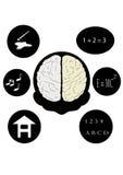 Mann und Gehirn lizenzfreie abbildung