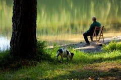 Mann und Hund auf dem See stockbild