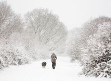 Mann und Hund im Schnee lizenzfreie stockbilder