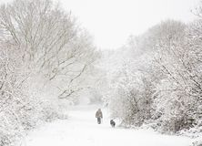 Mann und Hund im Schnee Lizenzfreie Stockfotos