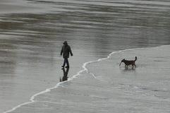 Mann und Hund mit Steuerknüppel auf Strand stockfotos