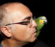 Mann und Papagei Stockfoto