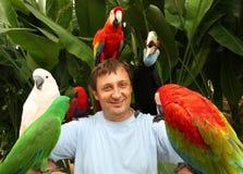 Mann und Papageien Stockfotos