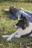 Mann und sein Hund Lizenzfreie Stockbilder