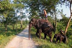 Mann und Tier Original und Bediensteter Elefant mit Mann Stockfoto