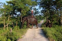 Mann und Tier Original und Bediensteter Elefant mit Mann Stockbild