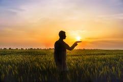Mann unter dem Feld mit den Ohren des Weizens und der Sonne auf seinen Händen Stockfoto