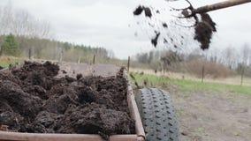 Mann verbreitet organisches Düngemittel auf seinem eigenen Bauernhof Bodendüngemittel stock video footage