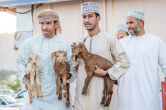 Mann von Oman mit seiner Ziege Stockfotografie