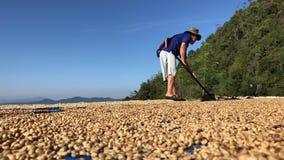 Mann von trocknenden Kaffeebohnen Thailands stock footage